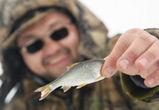 Воронежцы душевно отдохнули на «Зимней рыбалке с CHERY»