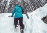 Воронежский заповедник приглашает желающих покататься на лыжах