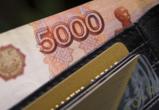 Реальные доходы жителей Воронежской области за год снизились на 7,3%