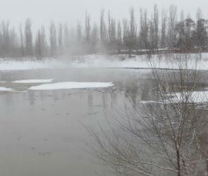 Сточные воды с завода «Эколайнер» продолжают заливать левый берег Воронежа
