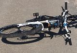 В Воронеже водитель мусоровоза ответит в суде за гибель 75-летнего велосипедиста