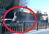 Мама двух детей, которую на бешеной скорости сбил Субару, умерла в БСМП Воронежа