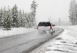 МЧС предупреждает воронежцев о сильном ветре, гололеде и снежных заносах