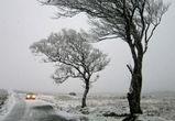 Спасатели предупредили воронежцев о резком ухудшении погоды