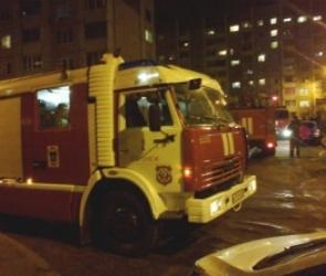 На пожаре на улице Лизюкова погиб пенсионер, пострадала его 88-летняя мать