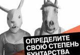 Воронежцам предлагают определить свою степень бунтарства