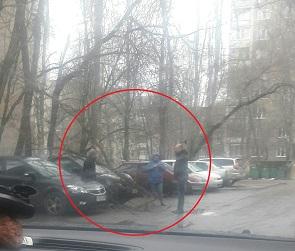 В Воронеже дерево упало на иномарку