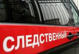 СКР прокомментировал информацию о найденных в Воронеже человеческих останках