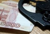 Житель Воронежской области пытался подкупить полицейского 15 тысячами рублей