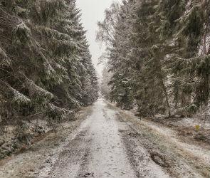 Снег и мороз могут вернуться в Воронеж в ближайшие дни