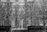 МЧС предупреждает воронежцев о шквалистом ветре и снегопаде