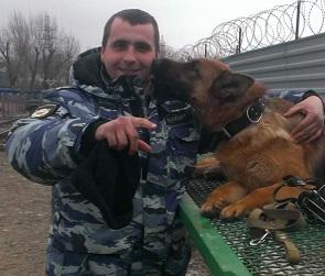 В Воронежской области собака Коша помогла задержать автовора