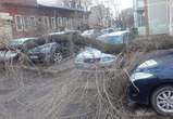 Фото последствий бури в Воронеже: деревья упали на машины, дороги и провода