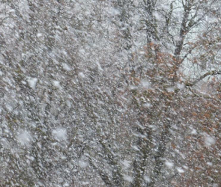 Воронежцев снова предупреждают о снеге, гололедице и сильном ветре