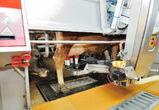 На ферме «Молвеста» в Воронежской области внедрили роботов-доярок