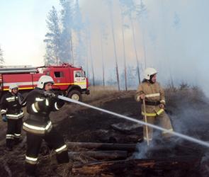 В Воронежской области ситуация с ландшафтными пожарами стала катастрофической