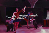 «Цирк» - танец Ирины Купавых и Дарьи Чавкиной (ВИДЕО)
