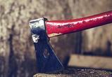 В Воронежской области грабитель ударил пенсионера топором по голове