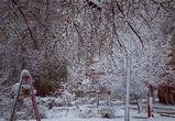 Соцсети заполонили фото апрельского снегопада в Воронеже