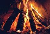 В Воронеже введут противопожарный режим — шашлык на майских вне закона