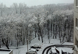 Из-за снегопада воронежский аэропорт задержал и отменил несколько рейсов