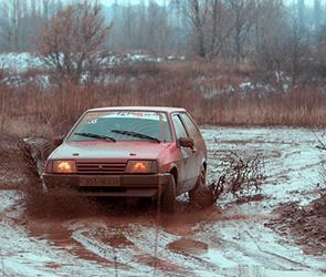 Воронежец расколотил палкой такси, обрызгавшее его грязью