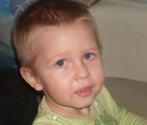 В Черноземье ищут пропавшего без вести 4-летнего мальчика