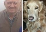 В Воронеже нашли пенсионера, пропавшего на прогулке с собакой