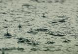 В Воронеже все выходные будет холодно и дождливо