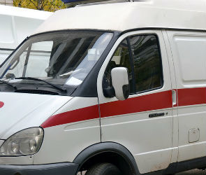 Водитель, сбивший женщину на пешеходном переходе в Воронеже, признал вину