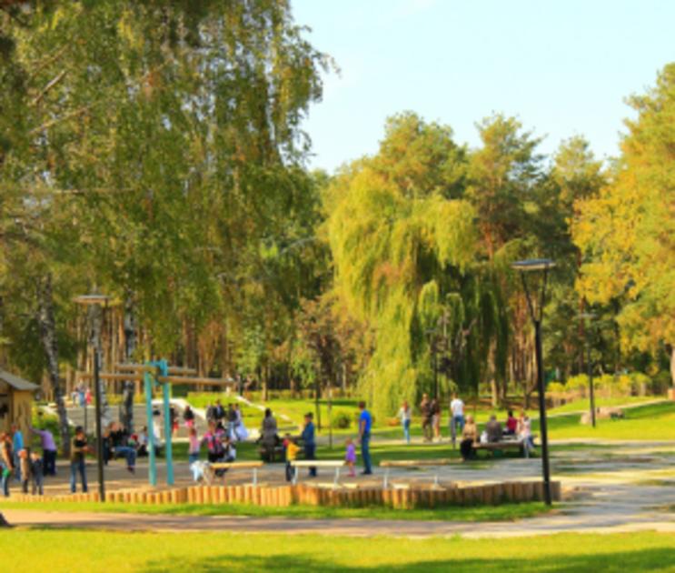 Власти Воронежа хотят присоединить участок в 1,7 га к парку «Алые паруса»