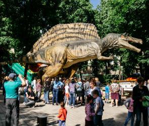 За первую неделю работы «Юркин парк» посетили 5 тысяч воронежцев