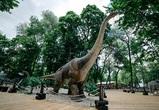 Воронежцы смогут посетить «Юркин парк» с 85 динозаврами бесплатно