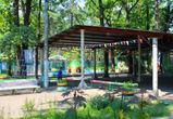 В мэрии озвучили размер субсидий на отдых в детских лагерях в Воронеже