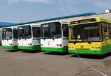 В Воронеже покупка 700 новых автобусов обошлась частным перевозчикам в 1,4 млрд