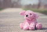 11-летняя школьница из Воронежа пропала в Крыму после ссоры с матерью