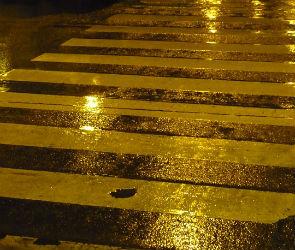 На пешеходном переходе в Воронеже насмерть сбили пенсионера