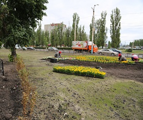 На месте Остужевского мини-рынка появился сквер