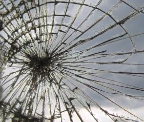 В Воронеже совершил экстренную посадку самолет с трещиной в лобовом стекле