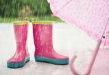 Воронежцам вновь обещают дождливую погоду