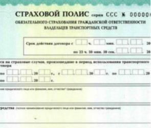 Воронежскую область захлестнула волна электронных полисов ОСАГО