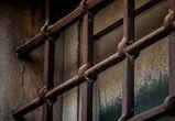 Убивший друга утюгом житель воронежского села проведет в колонии 8,5 лет