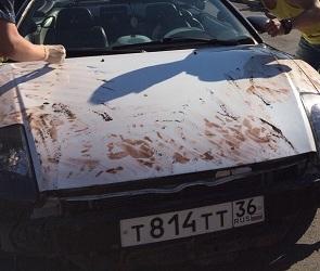Стали известны подробности задержания «окровавленного» кабриолета в Воронеже