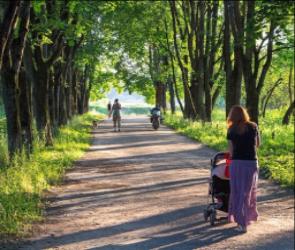 Прокуратура проверит аттракционы в воронежском парке «Танаис»