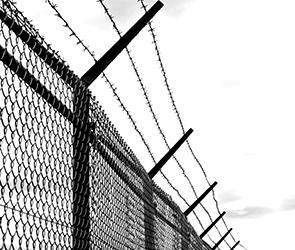 Сотрудник воронежской колонии осужден за взятки и передачу 20 телефонов на зону