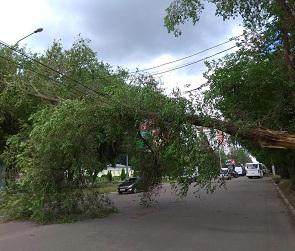 Появились фото с последствиями штормового ветра в Воронеже