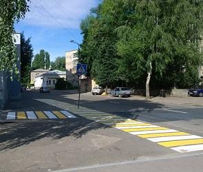 Уникальный пешеходный переход в Воронеже вызвал смех и слезы у горожан