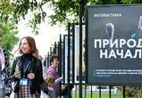 Фотограф из Воронежа вошла в топ победителей конкурса «Природа: начало»