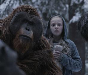 В воронежских кинотеатрах с 13 июля: обзор кино-премьер