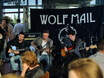 Концерт Wolf Mail в стейк-хаусе Panorama 158454
